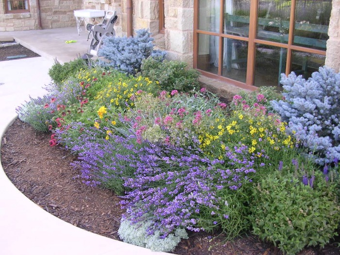Perennial beds - Knapp Landscape Architecture on perennial garden plans zone 7, cottage gardens landscape design, perennial shade garden design, perennial garden layout design, perennial bulb garden design, perennial flower garden design plans, perennial garden plans zone 5, perennial garden plants,